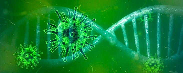 Scheffler y Horsfield, bajas por positivo en coronavirus