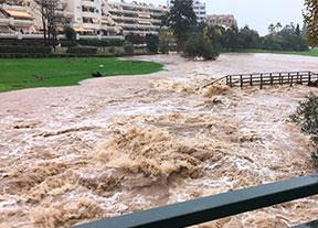 Los campos andaluces se movilizan tras la riada
