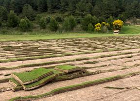 Nuevo plan agronómico en La Sella