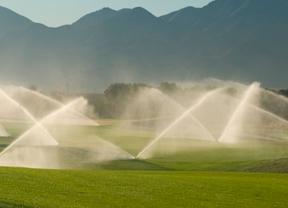 Agua reciclada y regenerada para 40 campos de la Costa del Sol