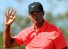 Tiger, una temporada de ida y vuelta